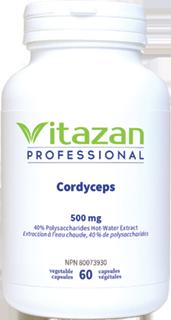 Cordyceps
